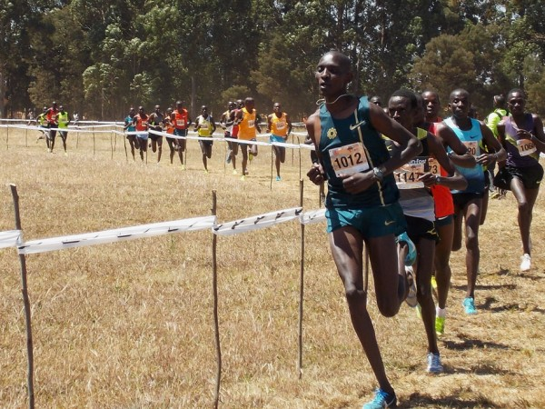 Discovery Kenya Cross Country